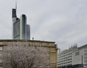 <h5>Heide Dreismann </h5><p>Stadtansichten Frankfurt/Main 06</p>