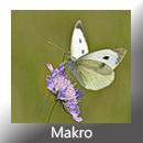 Makro HeD