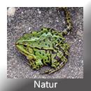 Natur GR
