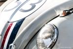 <h5>Herbie</h5>