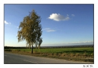 <h5>Paderborner Land</h5>