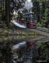 """<h5>""""Volldampf"""" Manfred Funcke</h5><p>Harzer Schmalspurbahn. Das Wasser wurde hinzugefügt.</p>"""